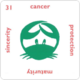 31 Cancer.png